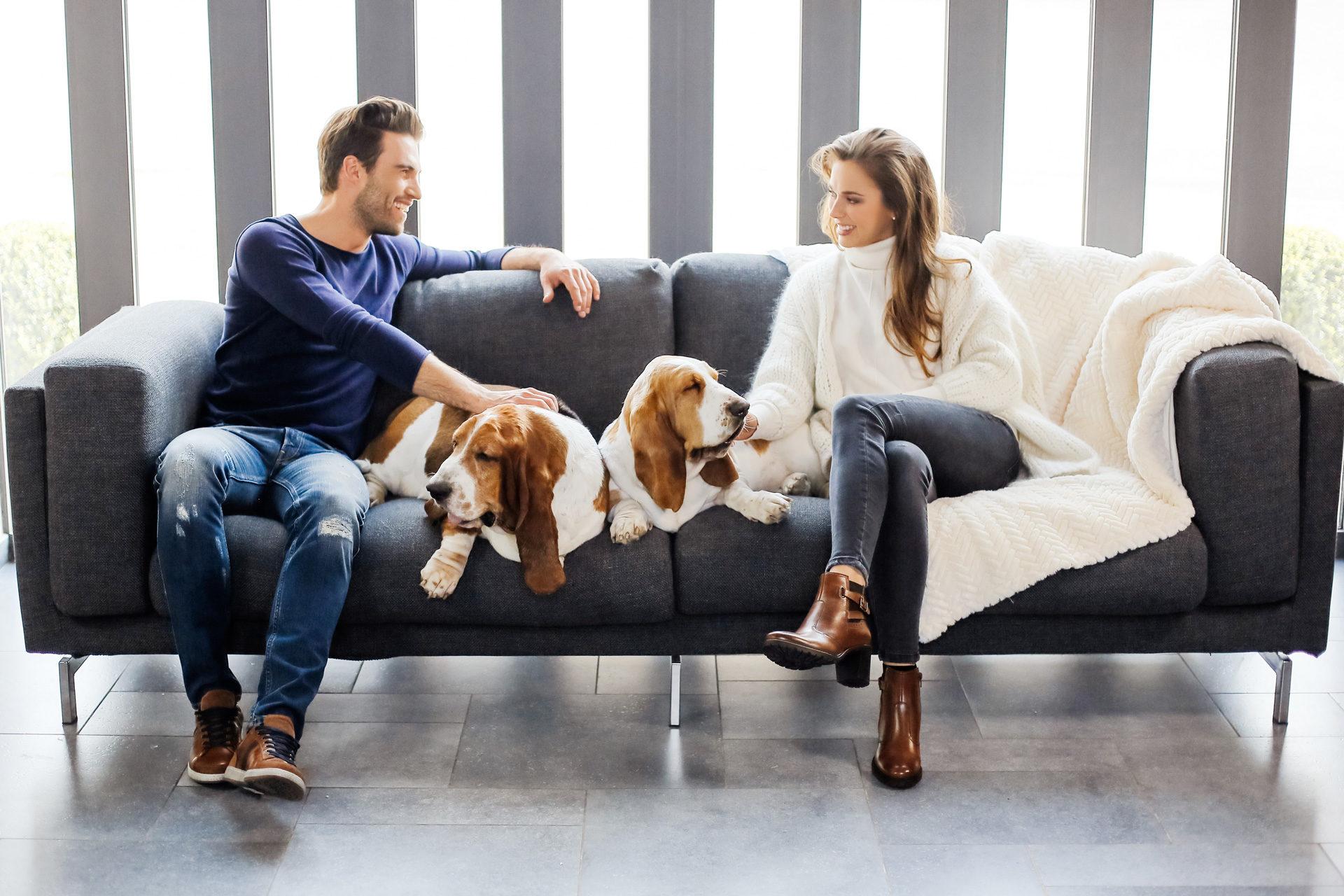 couple sur canapé avec deux chiens