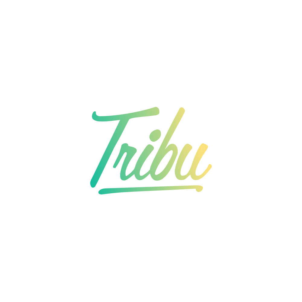 logo my tribu news